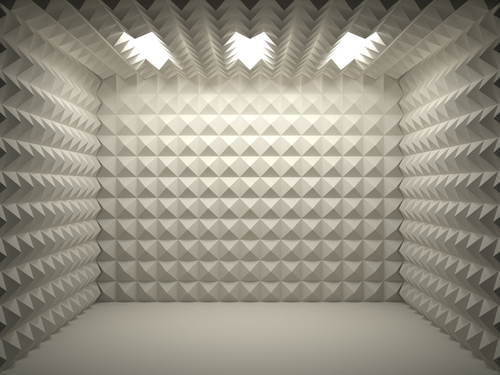 Tips for reducing echo in a room the foam factory for Reduce sound in a room